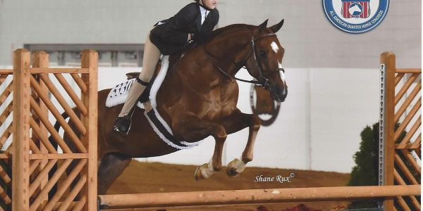 Appariscente (USEF) / Sonnys Flashy Secret (AQHA)